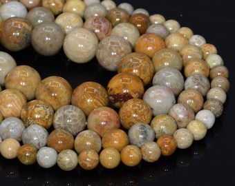 220054010 10mm White Fossil Jasper Beads Round Beads 10.5mm 15 Inch