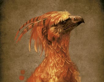 Fawkes. Harry Potter.