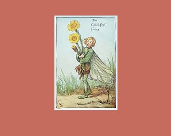 Cecily Mary Barker's Flower Fairies vintage print: The Colt's-Foot Fairy