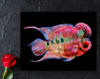 Custom Fish Portrait Print from your own Photos.