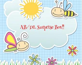 AB/DL Surprise Box!!
