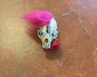 Punk rock googly eyed mink skull