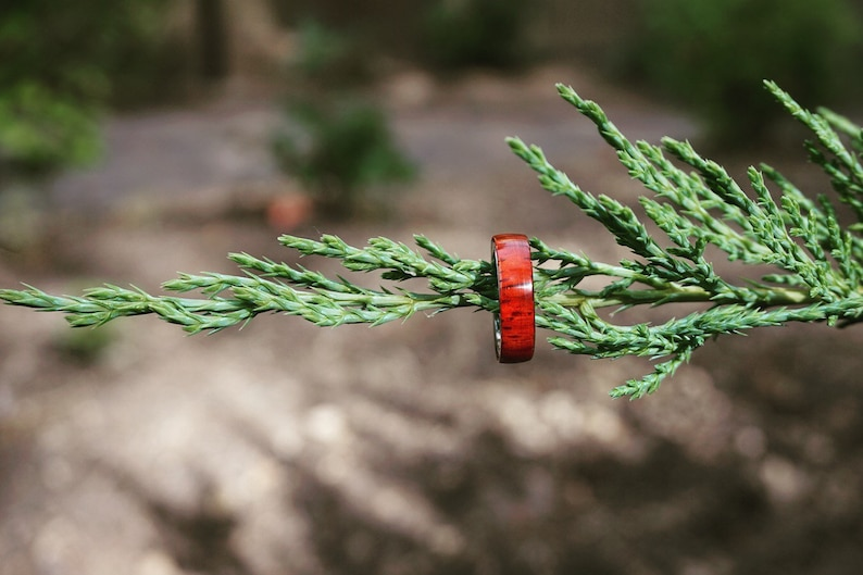 Wood Engagement Rings Wood Wedding Bands Womens Wood Rings Mens Wood Rings Gorgeous red Padauk wood ring