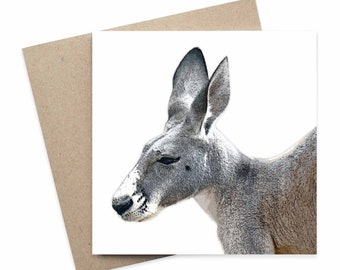 Damien / Kangaroo Australian Animal Greeting Card / Digital Artwork