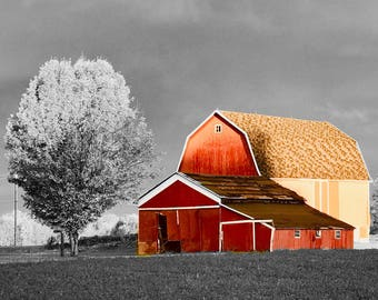 Country Barn (Black and White Color Splash)