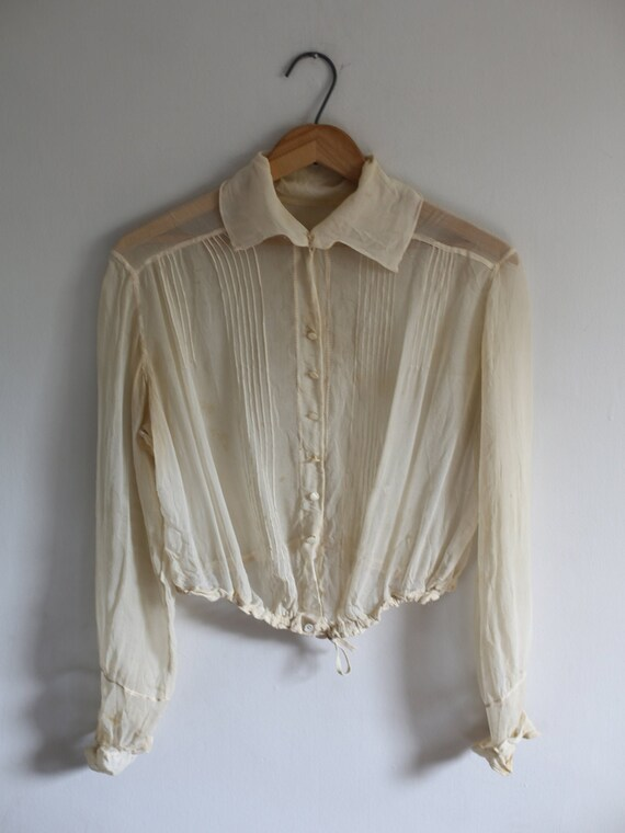 Delicate Victorian Sheer Blouse