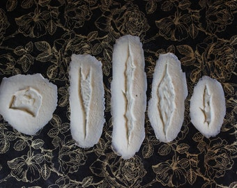 Wounds/Cuts (Latex) Prosthetic 5 Pack