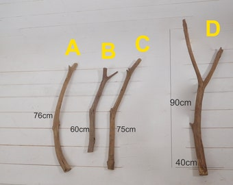Wall branch hooks for hanging clothes or lights