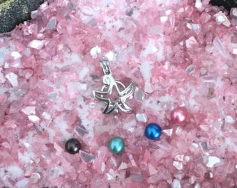 Starfish Oyster Cage -  DIY - Open your own oyster - Pearl Oyster Opening - Silver Plated
