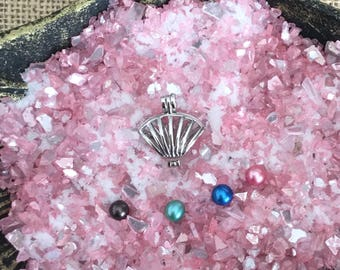 Seashell Oyster Cage -  DIY - Open your own oyster - Pearl Oyster Opening - Silver Plated