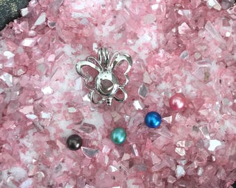 Butterfly shaped Oyster Cage -  DIY - Open your own oyster - Pearl Oyster Opening - Silver Plated