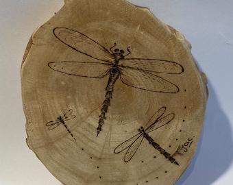 Pyrography Artwork - Dragonfly
