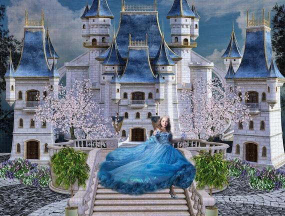 Cinderella Castle Beauty And The Beast Digital Backdrop Etsy