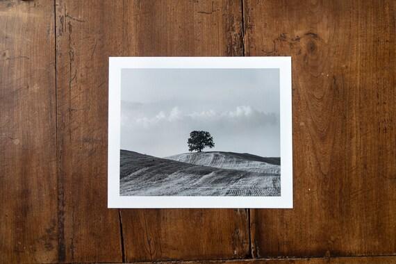 Lonesome Tree - Study n. 2 - Fine Art Print