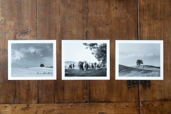 Italian Countryside Triptych - set of 3 fine art prints, black and white