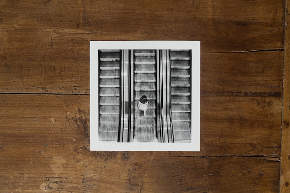 Little Girl on the Escalator
