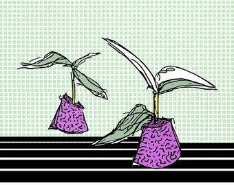 Plant Funk