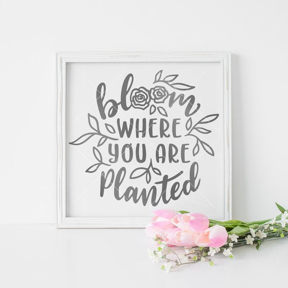 Bloom Where You Are Planted Svg Dxf Eps Png File For Cutting Etsy