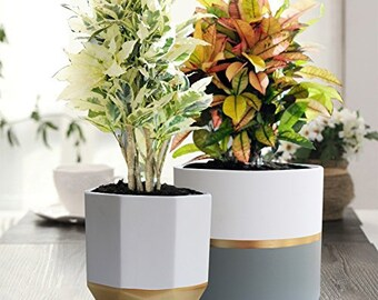 2 Pack  6 Inch Indoor Plant Pots   2 White Ceramic Indoor Planters With  Gold And Grey Detailing