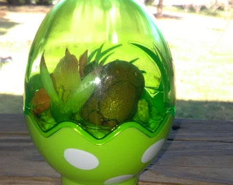 Easter egg, with painted turtle rock