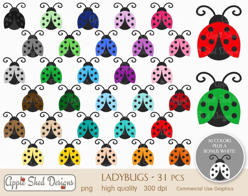 bugs LADYBUGS Clipart sticker clip art rainbow clip art insects ladybird planner clipart icons beetles multi-color clipart 31 qty