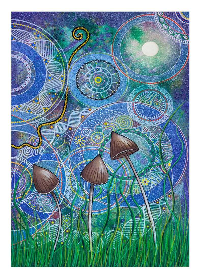 Magic Mushroom: Part one image 0