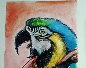 Super parrot print