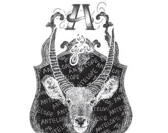 Animal Alphabet Art Prints
