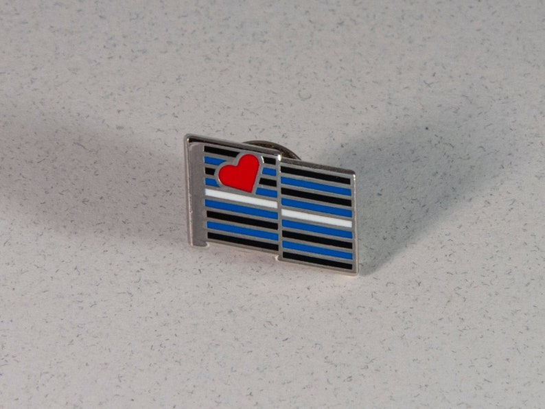 Leather Pride Flag Pin  Hard Enamel Leather Pride Lapel Pin image 0