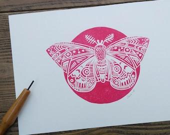 Midnight Moth