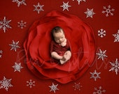 Digital Newborn Backdrop Christmas theme, white snowflakes background newborn backdrop