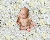 Flowerwall Digital backdrop for Newborn Photography , Floral digital backdrop, White rose flowers