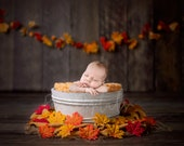 Colorful fall digital Newborn Backdrop, with wooden bucket and maple leaves