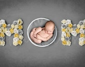 MOM sign newborn digital backdrop, Mother's day background, Floral letter Backdrop, Flower letter digital photo prop, Photoshop background