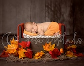 Autumn newborn digital backdrop with wooden bed and Maple leaves background, Digital backdrop for boy and girl