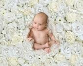 Flowerwall Digital backdrop for Newborn Photography , Floral digital backdrop, White rose flowers