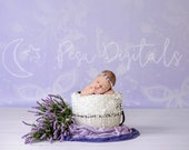 Lavender White bucket Digital Newborn Backdrop, Purple photography background, natural backdrop for girl, butterfly pattern photo prop