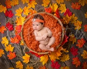 Autumn newborn digital backdrop with brown wooden bowl and Maple leaves background, Digital backdrop for boy and girl