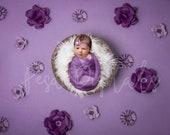 Purple Flower Backdrop, Digital Backdrop, Newborn Digital Backdrop, Purple Backdrop, Newborn Backdrop, Flower Backdrop, Girls Backdrop