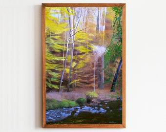 Washington DC Art Print Rock Creek Park District of Columbia