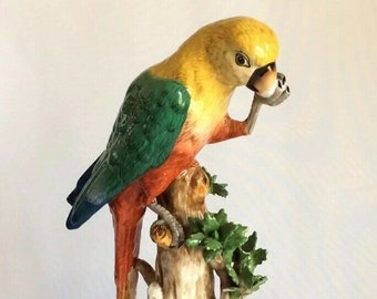 "Porcelain Bird Parrot Macaw Ara Figurine Ornithology Dresden Potschappel 12"" AF"