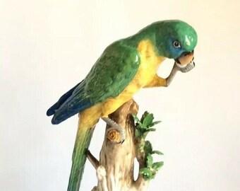 "Dresden Potschappel Porcelain Bird Parrot Macaw Ara Figurine Ornithology 12"" Antique"