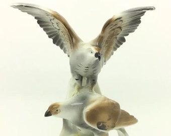 Graefenthal Thuringia Carl Scheidig Continental Bird Figure Eagles Ornithology