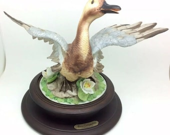 Capodimonte Viertosca Porcelain Bird Animal Garganey Teal Duck Ornithology Rare