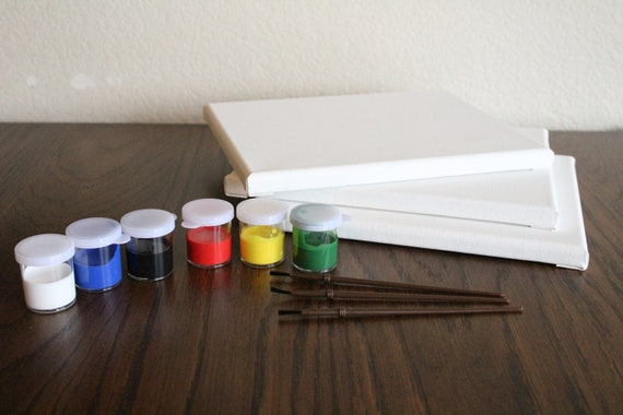 Three Pack Canvas And Acrylic Paint Starter Kit
