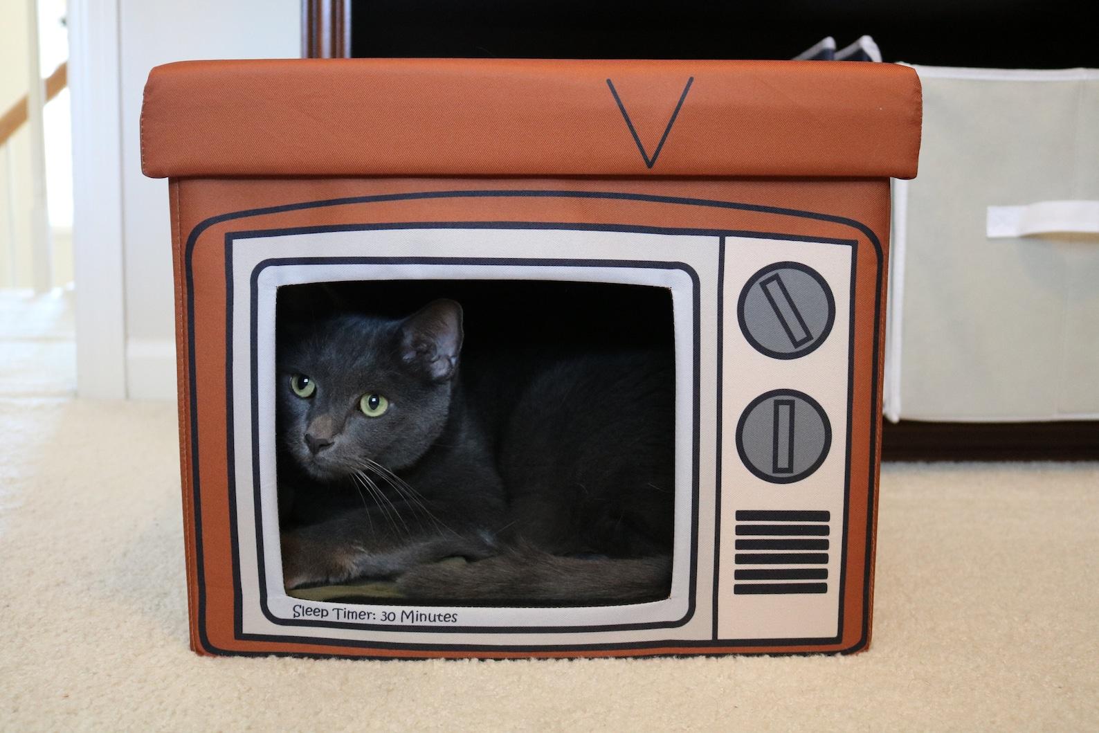 TV Cat Cube