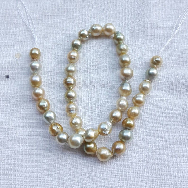 Loose Pearl yellow Baroque Pearl Near Around South Sea Pearl Natural Jewelry Supply for Pendant or Ring Xl Size