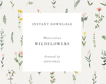 Wildflower Clipart Watercolor Floral Botanical Hand Drawn png flowers clip art seamless illustrations plant flower sprig wedding floral