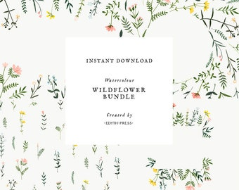 Wildflower Clipart Floral Watercolor Bundle Border Frame Clip art Flowers Background Botanical Meadow Illustrations Hand Painted printable