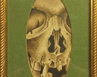 Skull - original painting